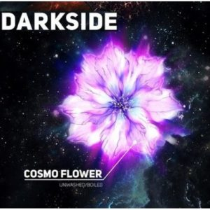 DarkSide Cosmo Flower