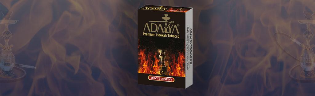 Tony's Destiny Adalya 10