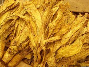 Табачное сырье для Кальяна