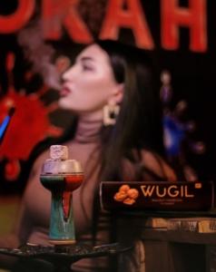 Wugil (Вуголь)